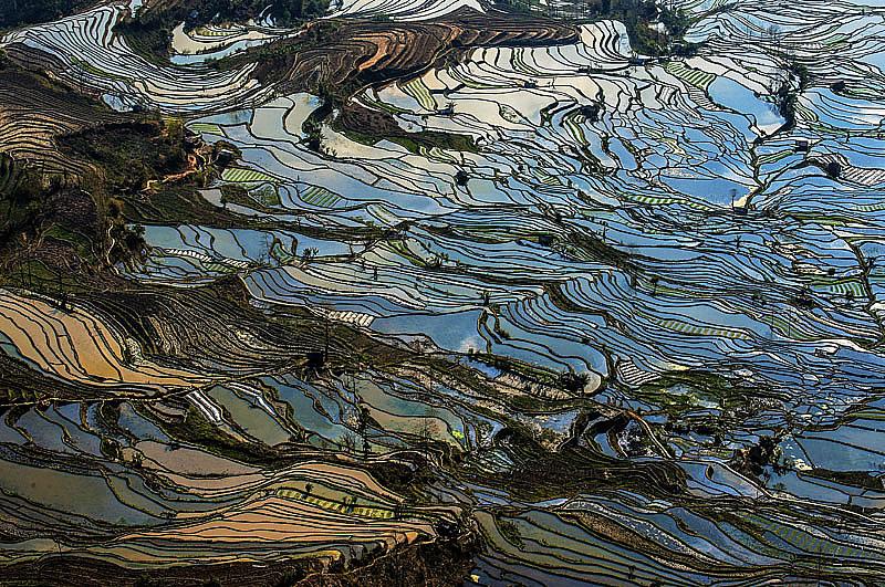 fot. Xuejun Xia
